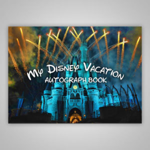 Disney Autograph Book Fireworks